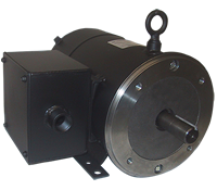 wound-motor-8in